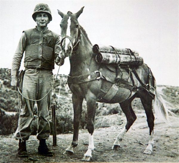 Sargent Reckless with Sargent Latham