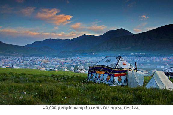 Horse Festival encampment