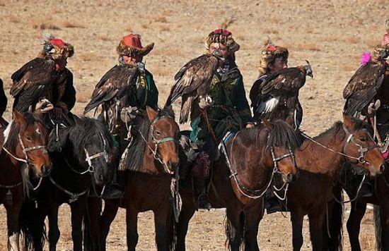 Altai horses