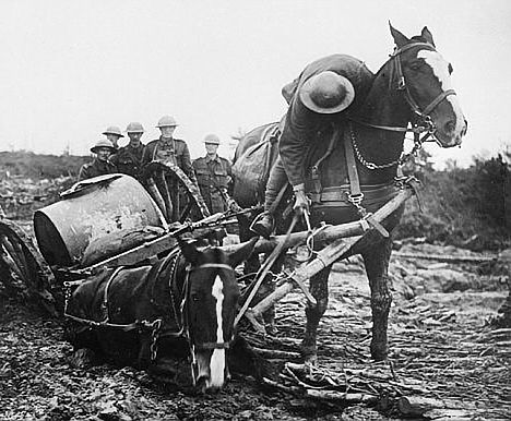 Picture of WW1 Ardennes French artillery horses